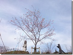 16-02-26-10-33-25-689_photo