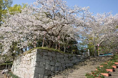 舞鶴城址公園